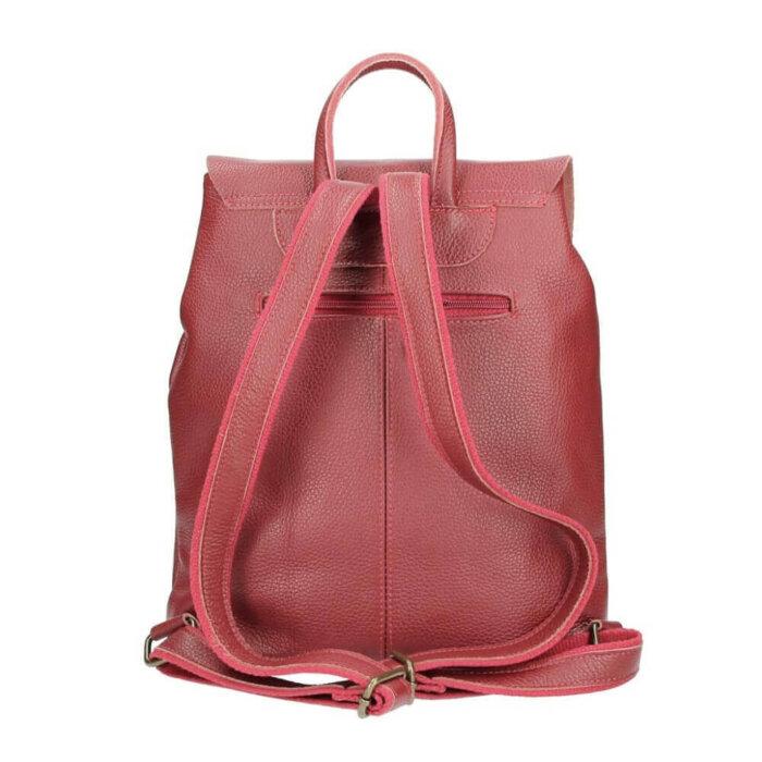 salsa leather backpack bordeaux back